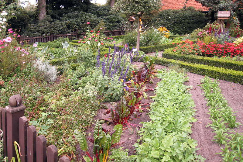 Огород декоративный огород огород на